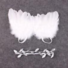 Asa de anjo + tiara prateada